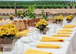 חתונה בטבע באווירה צהובה