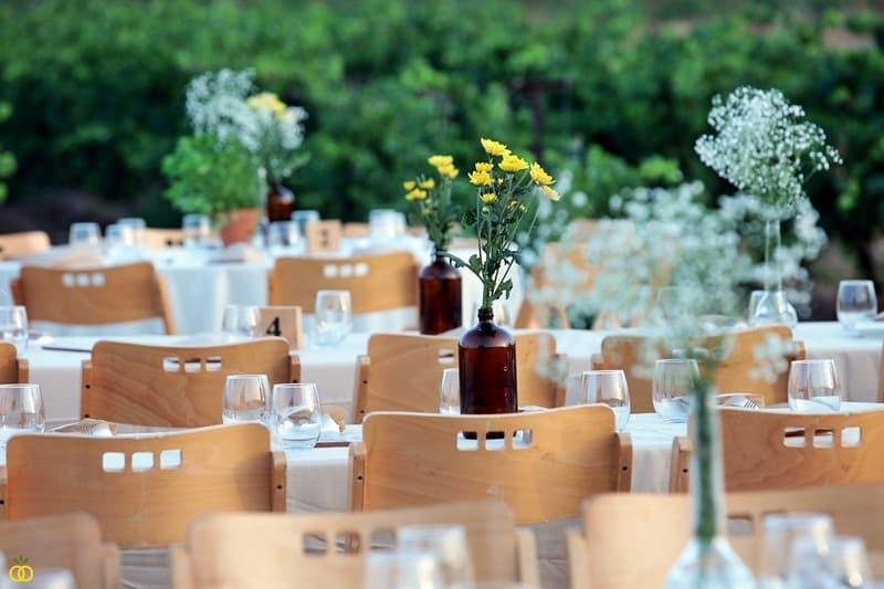 חתונה בטבע בכרם ענבים