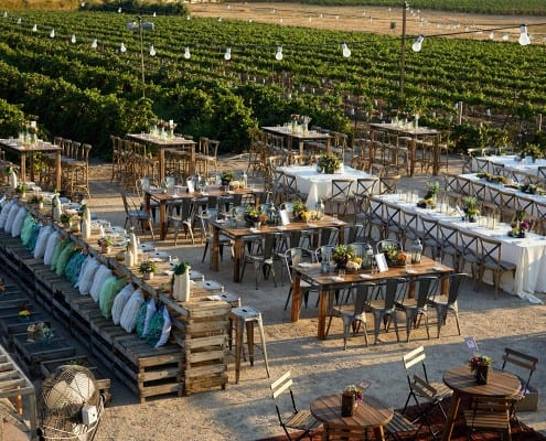 חתונה מעוצבת בכרם